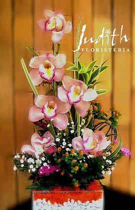 T72- Orquídeas rosadas