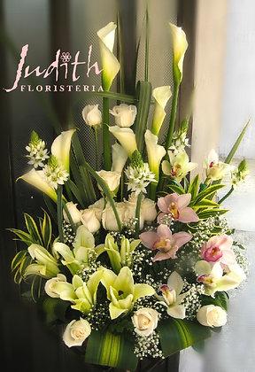 T73- Lirios, cartuchos y orquídeas