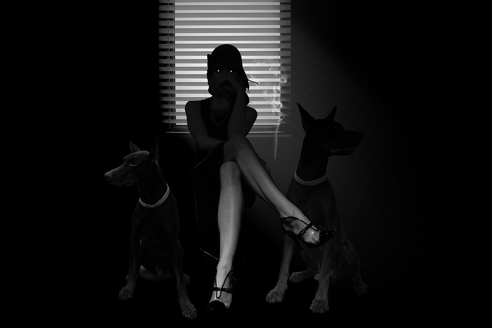 A cover image for a blog on David Baldacci's top 5 best selling book series of all time on Amazon. The image depicts a spooky girl sitting in a dark room with a window behind her and two dogs by her side.