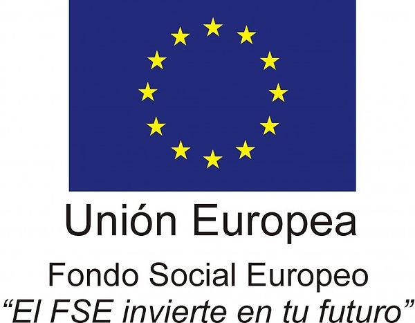 Logo-FSE-700x545.jpg