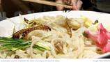 【💡| WEF短片分享】吃出蟲圍,蟲蟲農場能為糧食問題解套?