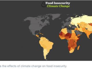 【💡| WEF 好文分享】氣候變遷下即將消失的12種食物