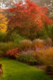 Knoll gardens Autumn JC (37 of 50).jpg
