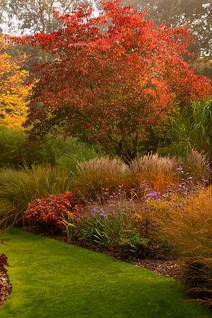 Knoll Gardens Nursery Dorset autumn plants fall leaves foliage grasses lawn path