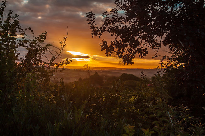 Sunrise, dawn, landscape, garden, abergavenny