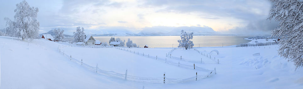 Winter scene, arctic ocean, Tromso, Norway, snow, winter landscape