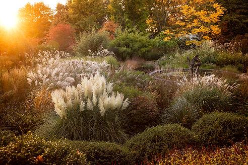 Knoll gardens Autumn Dorset grasses pond fountain sculpture trees evergreens sunset