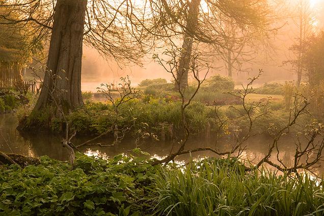 Longstock Water Gardens-May 2021 (184 of 748).jpg
