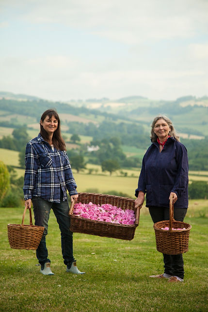 petals of the valley, rose water, roses, craftspeople, artisan producers, monmouthshire business, welsh food