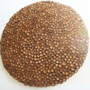 Coconut disc (2020)