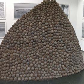 Cococomb (2016)