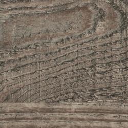 Ravine Wood