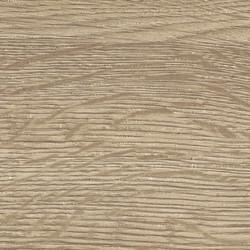 Lido Oak