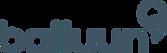 logo-balluun.png