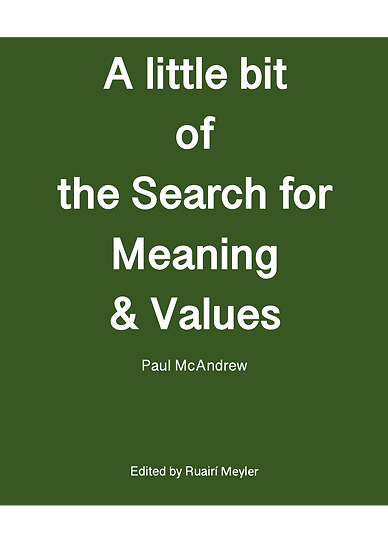 A Little Bit of the Search for Meaning and Values - Paperback