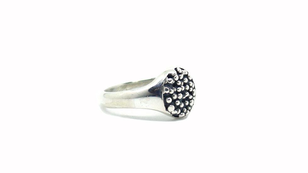 Micro chevalier caviar