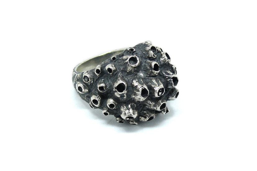 Barnacles ring