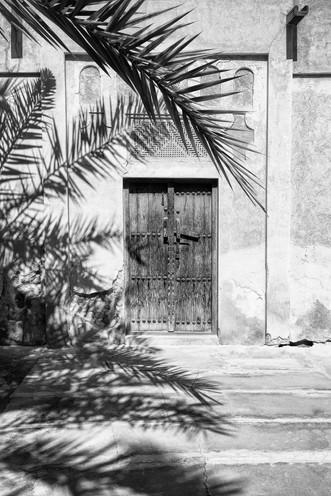 Palm shadow b_w