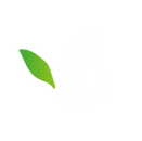 Berries-cafe-social-logo-1 copy.png