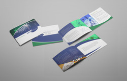 EHIM DataReports Brochure
