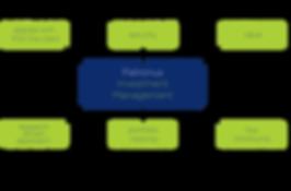 Patronus Investment Management Diagram