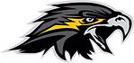 Logo - Wichita Falls Nighthawks