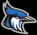 Raytown - logo.png