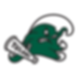 Website Logo - Tulane.png