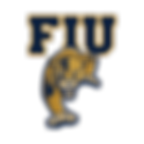 Website Logo - FIU.png