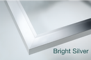 Bright-Silver.png