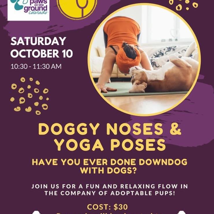 Puppy Yoga @Honor Yoga Highlands Ranch