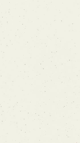 Y69 Beyaz Star