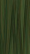 Y60 Verde Picasso