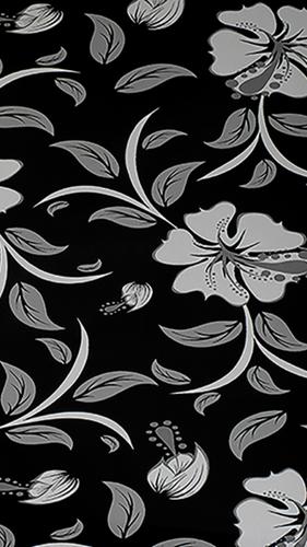 H64 Siyah Japon Çiçeği