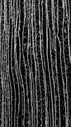 H58 Siyah Şelale