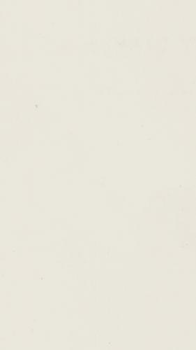 Y38 Bianco