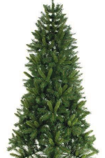 Heartwood Spruce 120cm