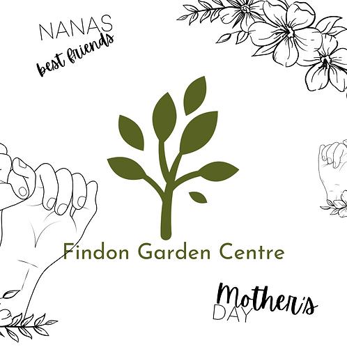 ColourMe: Mother's Day for Nana Card Printout