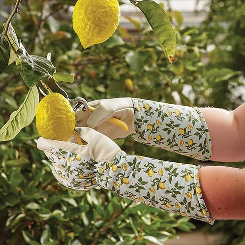 Briers Sicilian Lemon Garden Gauntlet Professional - Medium