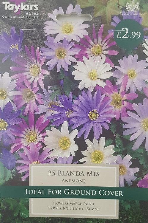 25 Blanda Mix