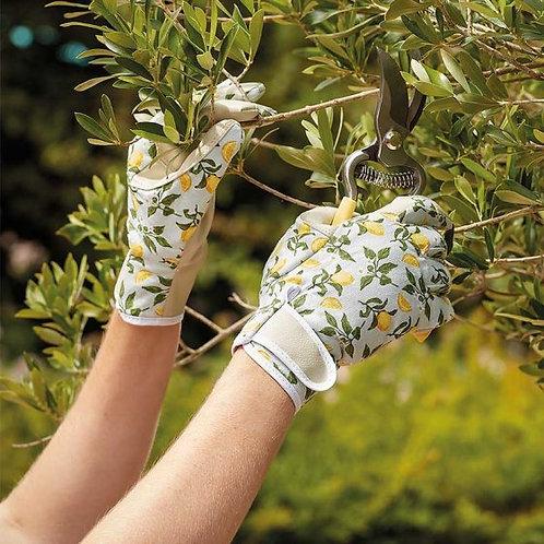 Briers Sicilian Lemon Smart Gardeners Professional - Medium