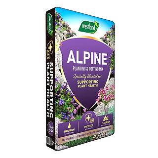 alpine.jpg