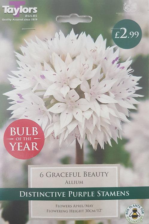 6 Graceful Beauty Allium