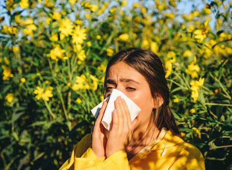 Four Culprits That Can Trigger Your Allergies
