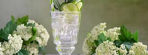 Drink menu at the Gin Kitchen Surrey