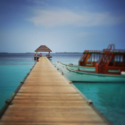Instagram - #water #maledives #nikond7000 #lightroom5 #schärfeverlauf #Traum