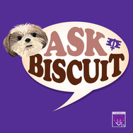 ASK BISCUIT