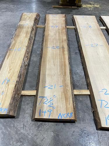 New Cypress #88