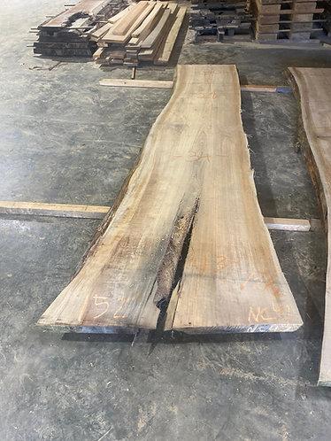New Cypress #47