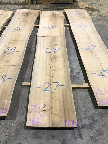 New Cypress #74
